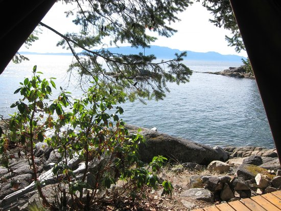 Rockwater Secret Cove Resort: View from the massage tent