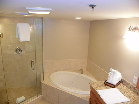 The Residences at Biltmore : Spacious bathroom