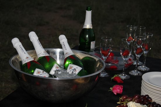 nThambo Tree Camp: Valentine's day! Champagne!