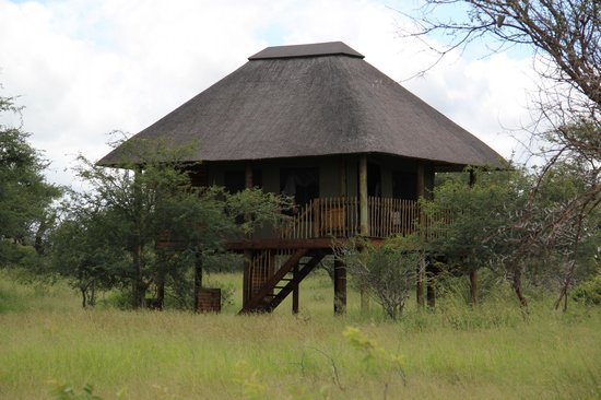 nThambo Tree Camp: The room