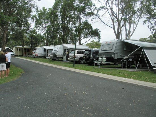 North Coast Holiday Parks Moonee Beach : Powered Sites