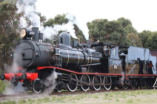 The Bellarine Railway: Steam Train Driver Experience locomotive - T-Class