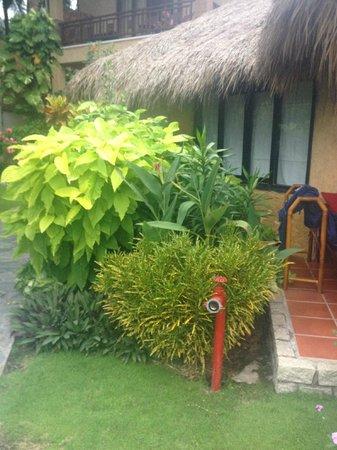 Bamboo Village Beach Resort & Spa: bungalow shot