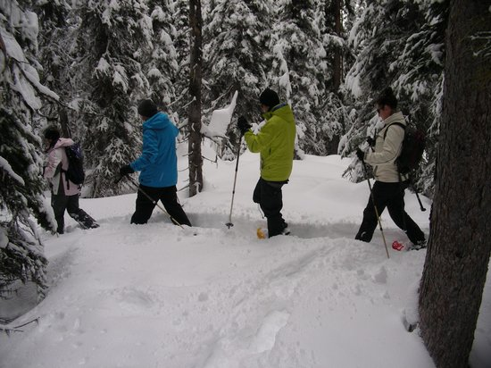 Great Divide Day Hikes : Snowshoeing