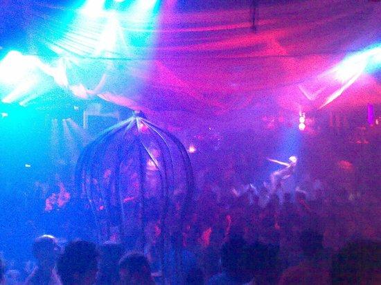 Pacha Ibiza: Pacha