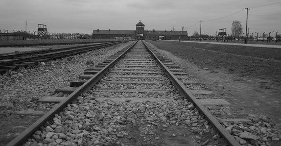 PolandTransfer - Tours: Birkenau train tracks