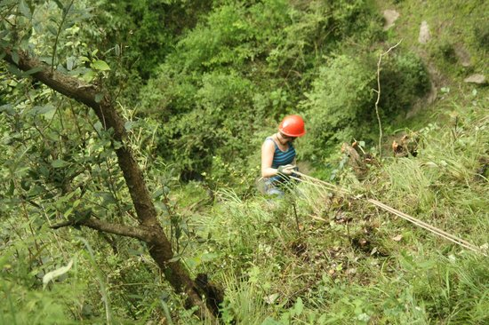 Camp Potters Hill: rappling
