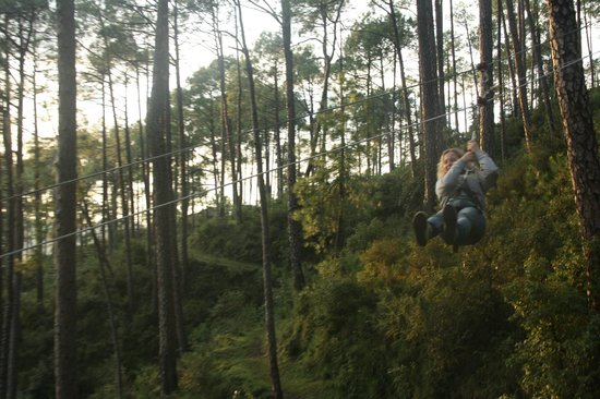 Camp Potters Hill: getting from one tree to another on the rope