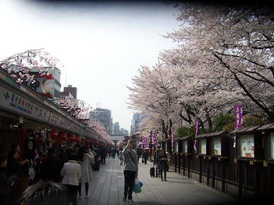 Nakamise Shopping Street (Kaminarimon): mas ceresos que estan sobre las tiendas !!!