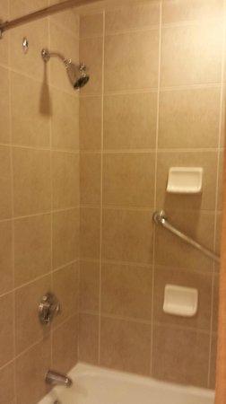 Sheraton Music City Hotel: Shower