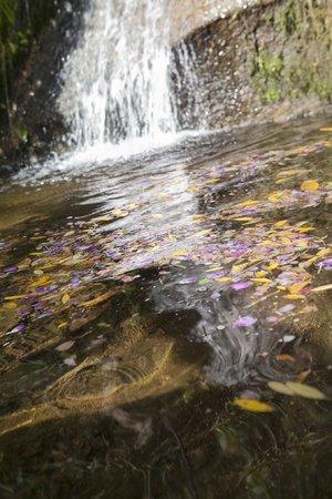 Pousada Paraiso Acu : Dormir ao som da cascata é muito relaxante
