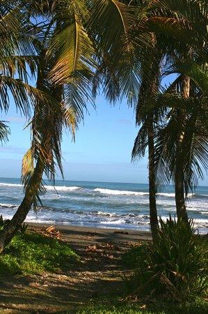 El Encanto Inn: nearby beach!