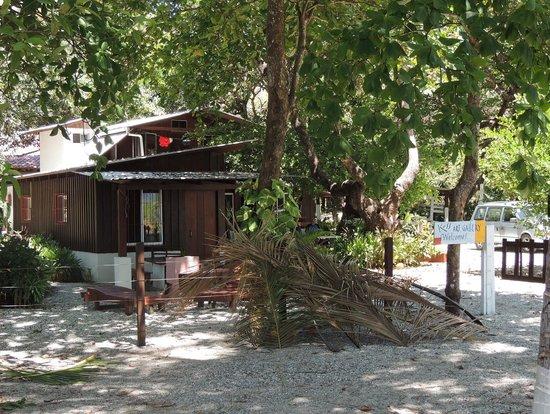 Koss Art Gallery: Jaime's cabins