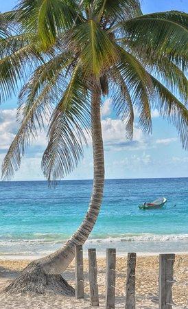 El Paraiso Tulum: Beach area