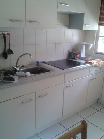 Camacuri Apartments Aruba: cocina impecable con cafetera y nevera