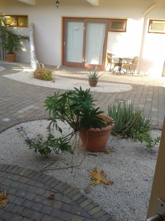 Camacuri Apartments Aruba: me gustó su jardín delantero y trasero.