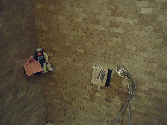 Titanic City Hotel : Salle de bains douche