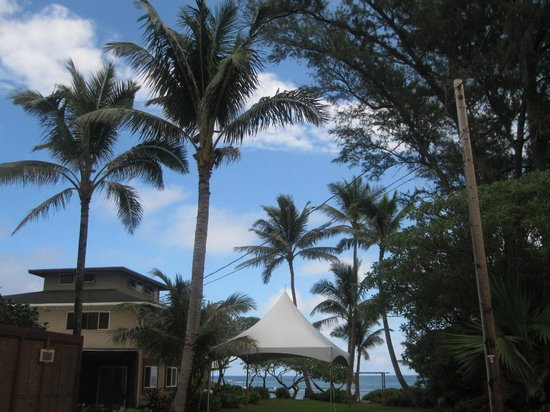 Tiki Moon Villas : Beautifuly grounds