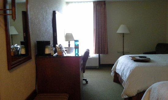 Hampton Inn St. Louis-Airport: bedroom