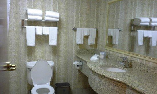 Hampton Inn St. Louis-Airport: spacious bathroom