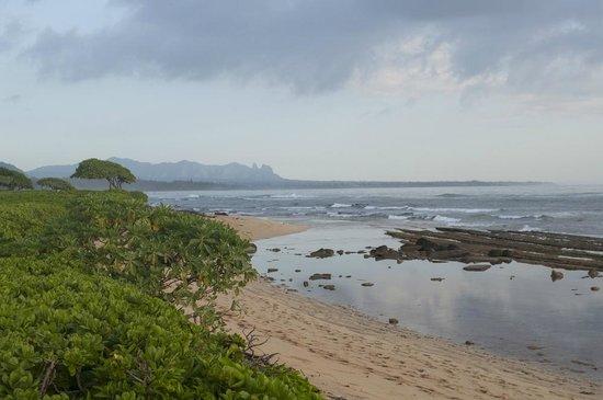 Kauai Beach Villas: lots of rocks, coral on beach