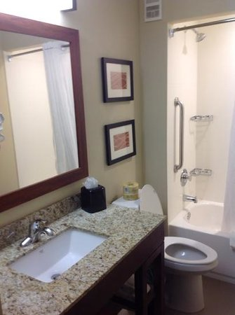 Comfort Inn and Executive Suites: newly renovated bathroom