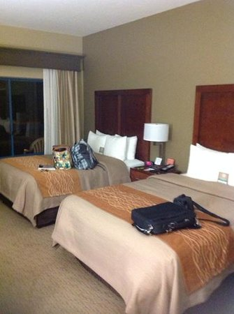 Comfort Inn and Executive Suites: beds