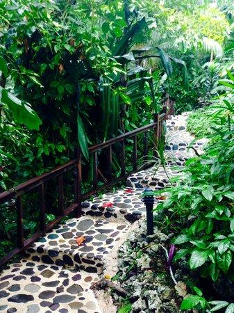 Geejam: The stony path.