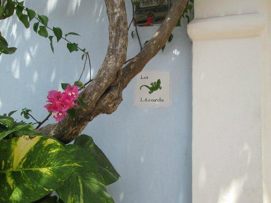 Les Lezards Bed & Breakfast: hotel door