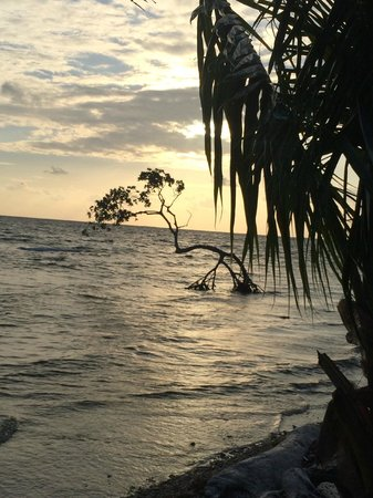 Tarpon Caye Belize: view from outside the cabana
