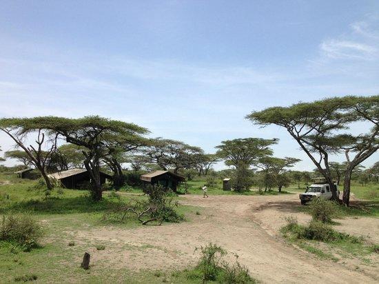 Serengeti Halisi Camp: Restaurant tents
