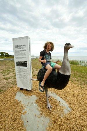 Meningie Lions Jubilee Park: Meningie Bushranger - Birdman of the Coorong - (exhibition studios)