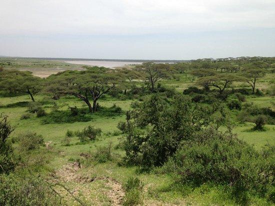 Serengeti Halisi Camp: Lake Ndutu from Halisi camp