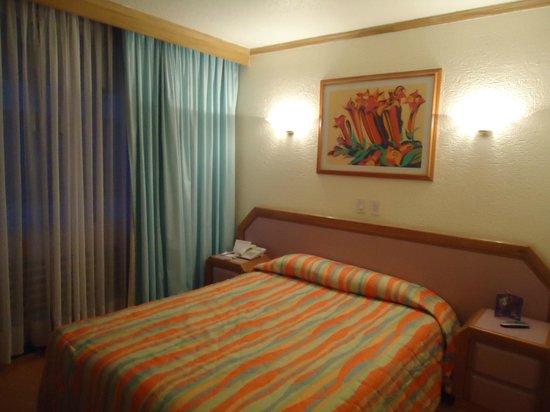 Hotel Casa Blanca Mexico City: outro ângulo do apartamento