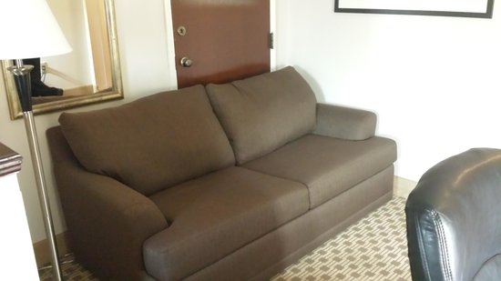 Comfort Suites: couch in our room