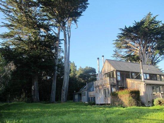 Cobbler's Walk Mendocino: The back lawn