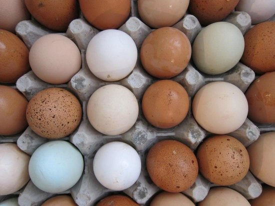 Cobbler's Walk Mendocino: Fresh eggs from our own chickens daily
