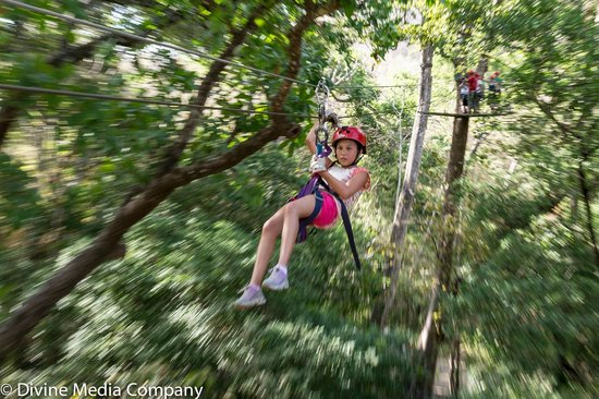 The Congo Trail Canopy Tour: Zip
