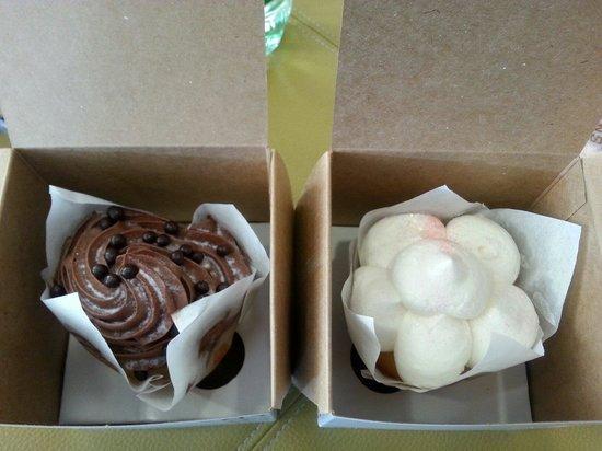 Sucre: Cupcakes