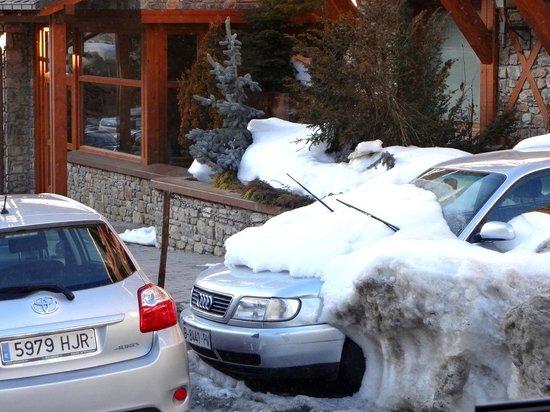 Grau Roig Andorra Boutique Hotel & Spa : Обычный подснежник