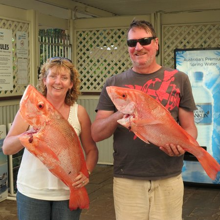 Amaroo at Trinity: Guests returning from fishing tour