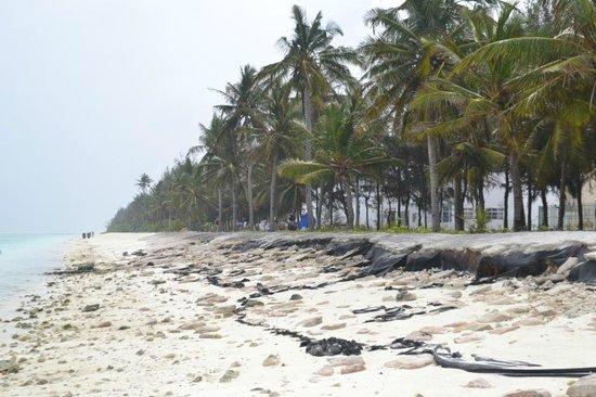 Hotel UI Inn: Пляж неподалеку от отеля