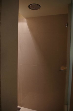 Palace Downtown: Walk in shower! Huge