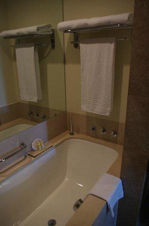 The Palace Downtown Dubai: Large bathtub, loved the shampoos etc