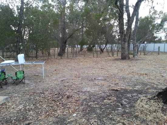 Lake Fyans Holiday Park: The adjacent space, waiting for our friends to arrive!