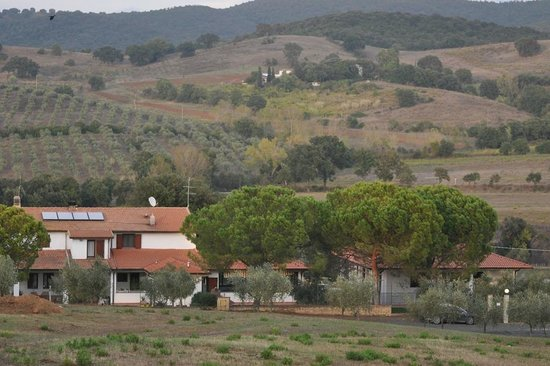 Agriturismo Poggio degli Ulivi 사진
