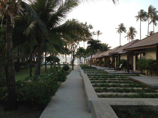 Centra Coconut Beach Resort Samui: View