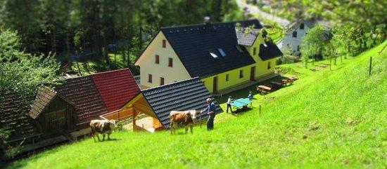 Kmecka hisa Stiftar: Terrace