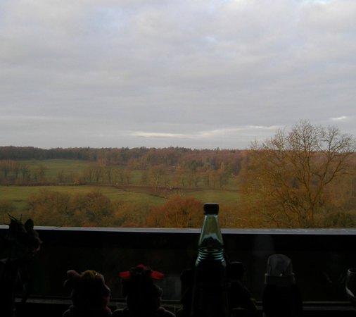 Dornröschenschloss Sababurg: 部屋からの眺め、冬の朝