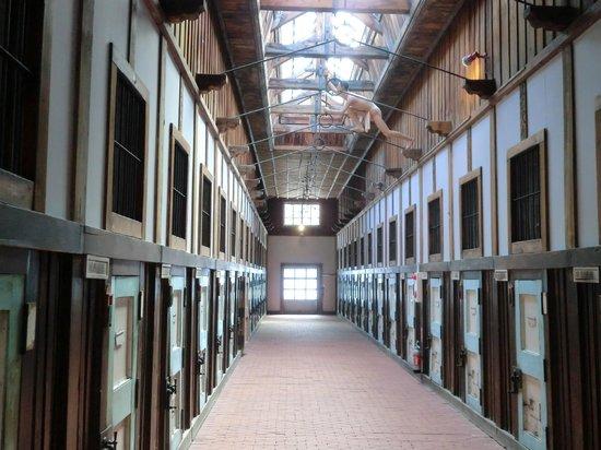 Abashiri Prison Museum : 五翼放射状舎房